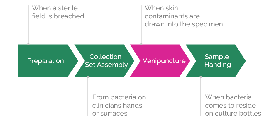 blood culture contamination source